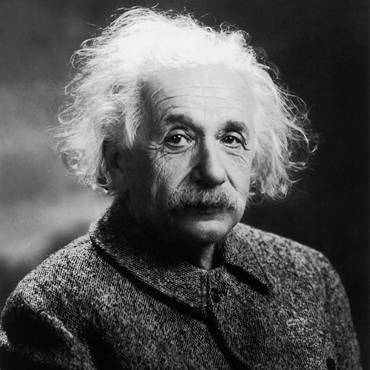 Previously unknown letter reveals Einstein's thinking on bees, birds and physics